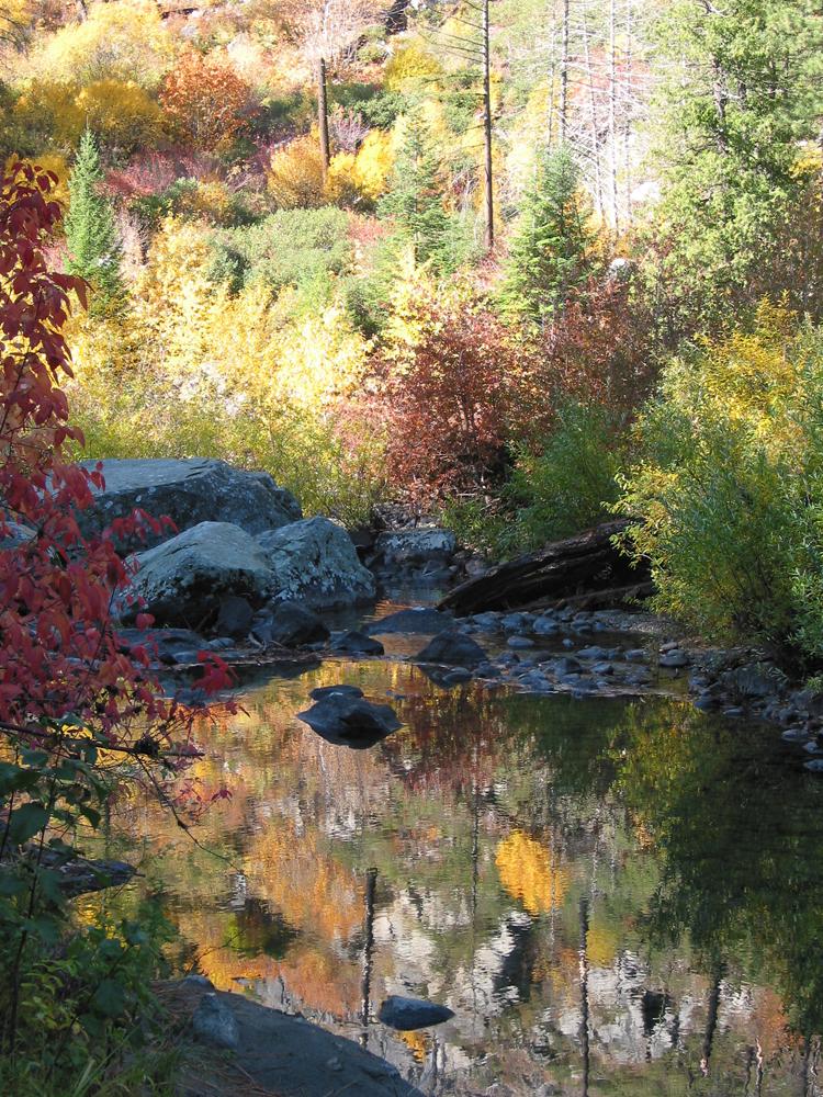 a really pretty spot along the river
