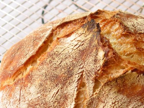 Mountain_peaks_of_gorgeous_bread