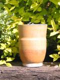Orange_teacup